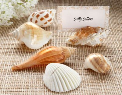 shells place